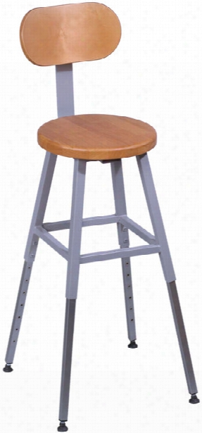 Adjustable Height Lab Stool With Back By Balt