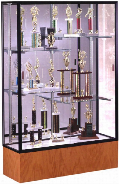 Display Case With Mirror Back By Waddell