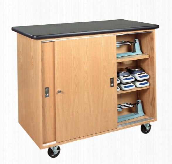 Mobile Balance Storage Cabinet By Diversified Woodcrafts