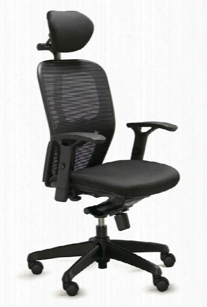 Polo Mesh Back Task Chair With Headrest By Dauphin