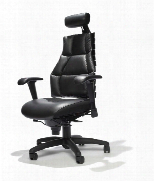 Executive Leather Chair With Headrest By Rfm Seating