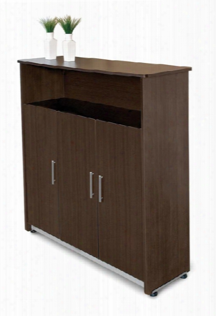 Venice Executive Storage Cabinet By Ofm