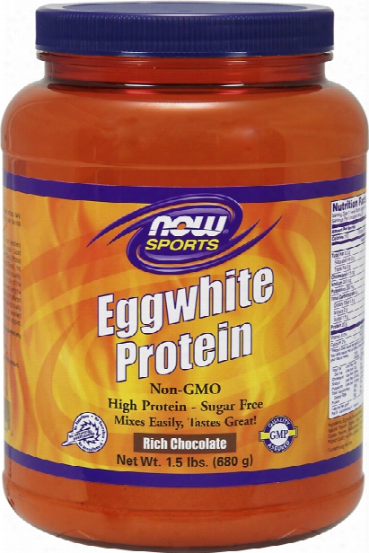 Now Foods Eggwhite Protein - 1.5lbsr Ich Chocolate