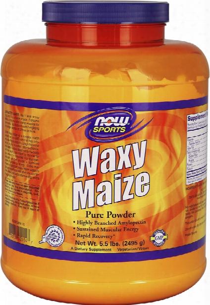 Now Foods Waxy Maize - .5lbs