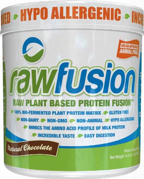 San Raw Fusion - 1lb Natural Chocolate