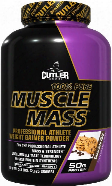 Cutler Nutrition 100% Pure Muscle Mass - 5.8lbs Chocolate Chip