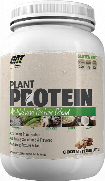 Gat Sport Plant Protein - 20 Servings Chocolate Peanut Butter