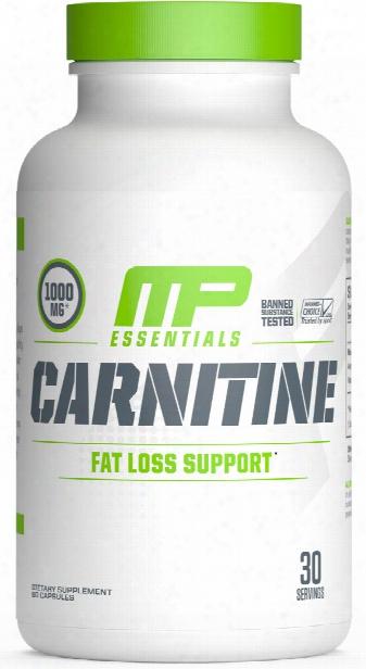 Muscoepharm Essentials Carnitine - 60 Capsules