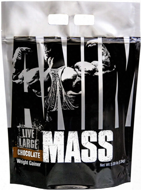 Universal Nutrition Animal Mass - 14 Servings Chocolate