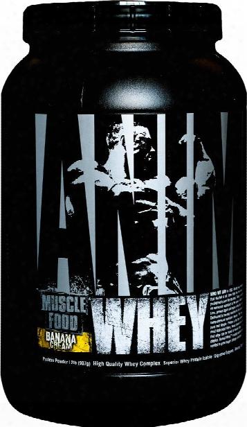 Universal Nutrition Animal Whey - 2lbs Baanana Cream
