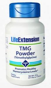 Tmg Powder, Net Wt. 50 G (0.11 Lb. Or 1.76 Oz.)