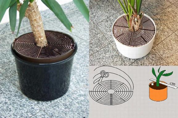 Reer Plant Pot Guard