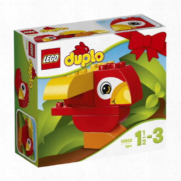 Legi Duplo My First Parrot