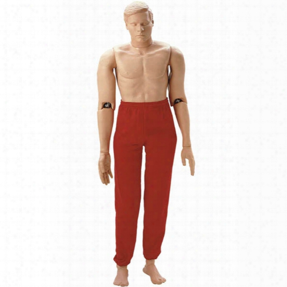 """Simulaids Adult-size Rescue Randy Training Manikin, 5'5"""" 165 Lbs. - Smoke - Unisex - Excluded"""