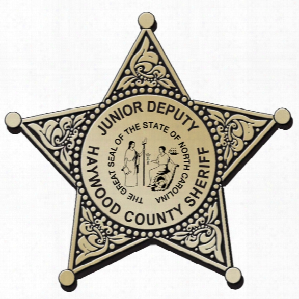 Stoffel Seals Jr. Deputy Plastic 5-point Badge, Gold W/ Gold Trim, Clip, 1000-2499 - Gold - Male - Excluded