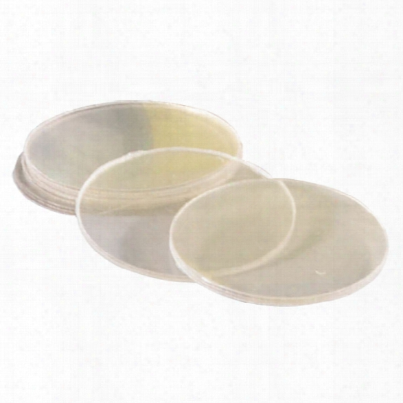 Streamlight Replacement Lens Stinger - Unisex - Included