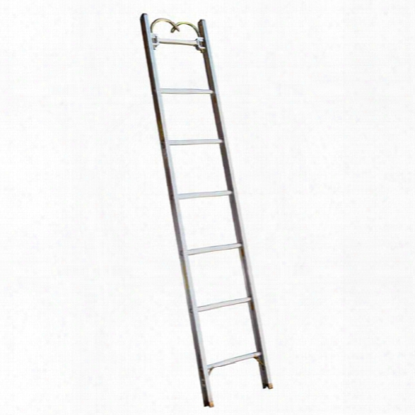 "Alco-lite Aluminum Pumper-type Roof Ladder, 12'l X 18-1/8""w, 2-7/8"" Banking Thickness, 36 Lbs. - Silver - Male - Excluded"