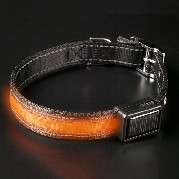 Brite-strike Lpcsu Lighted Dog Collar, Orange, Large - Orange - Unisex - Included